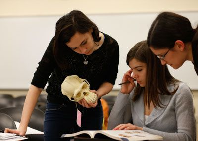 Girls studying a skull in anthropology class