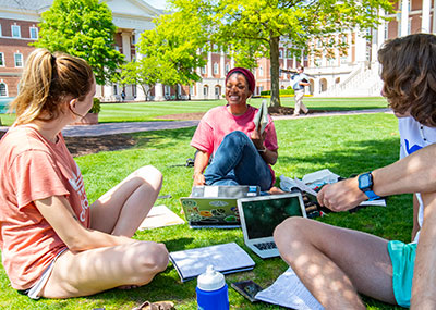 Students studying on the great lawn