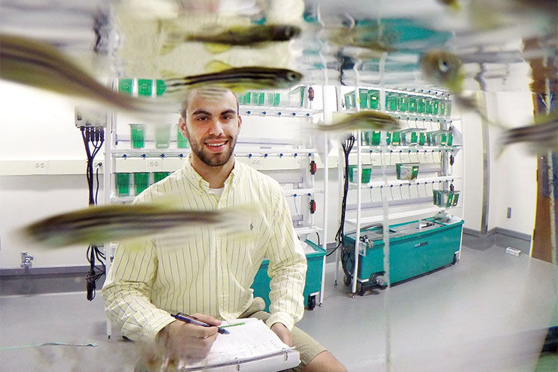 A student researcher works in the fish lab