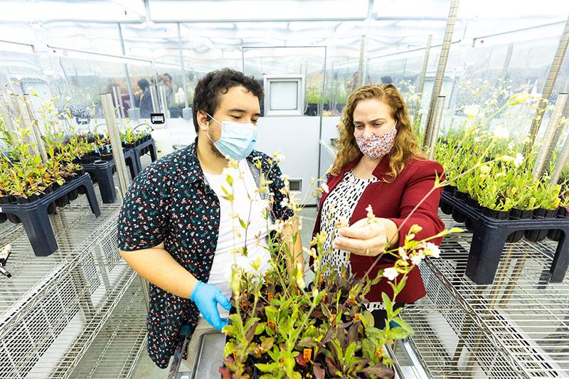 Lucas Sharrett (left), with Dr. Janet Steven in CNU's botany lab