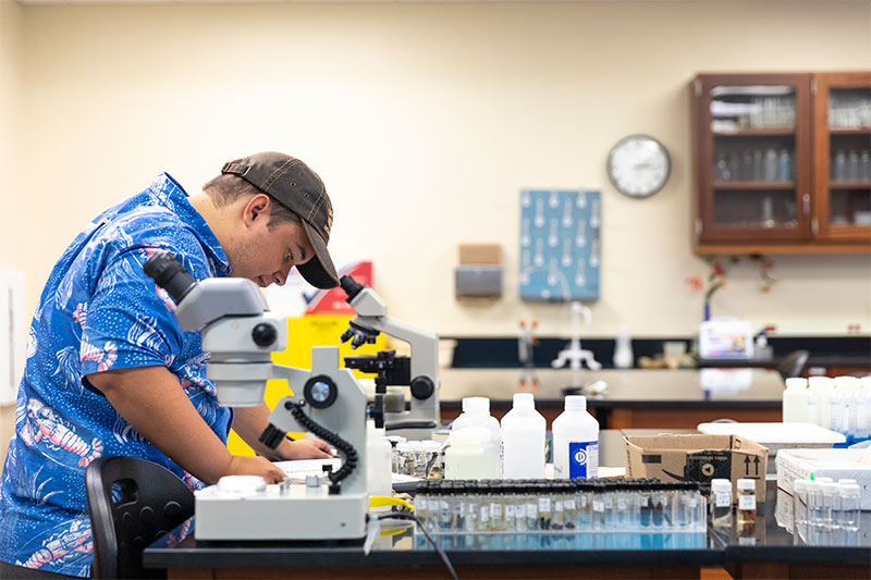 A student works in the biology lab